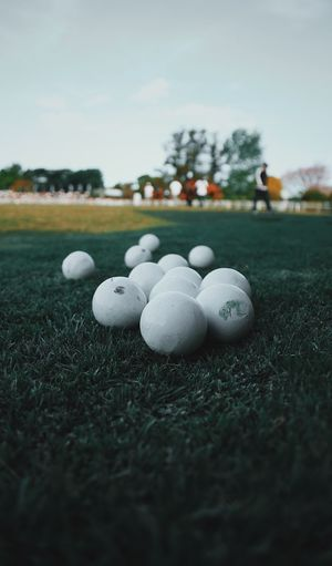 Grass Selective Focus Field Day No People Sky Nature Ball Plant Land Green Color Sport Outdoors Golf White Color Close-up Sphere Leisure Activity Golf Ball Cloud - Sky Surface Level