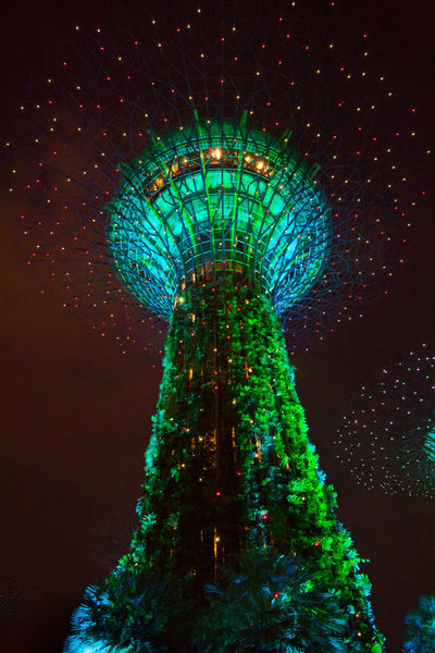 Gardens By The Bay Amusement Park Architecture Arts Culture And Entertainment Built Structure Celebration Decoration Glowing Illuminated Lighting Equipment Low Angle View Luxury Nature Night No People Sky Tall - High Tourism Travel Travel Destinations Tree