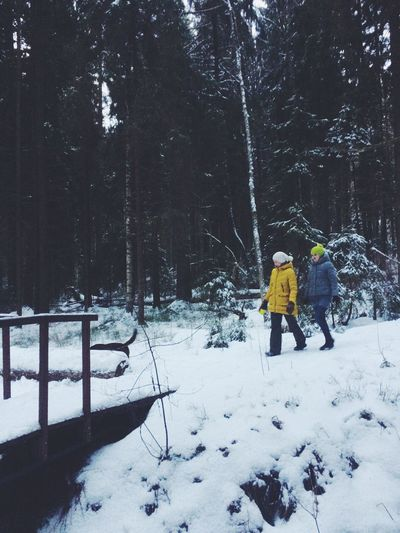 Adult Adults Only Beauty In Nature Cold Temperature Day Forest Full Length Landscape Leisure Activity Nature Only Men Outdoors People Real People Snow Togetherness Tree Two People Warm Clothing Weather White Color Winter Young Adult
