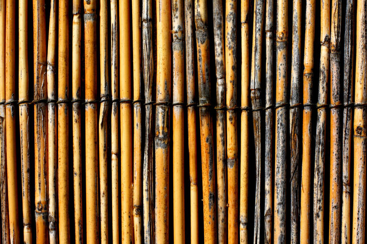 Bamboo Fence Closeup Architecture Background Background Designs Background Texture Backgrounds Close Up Bamboo Bamboo Fence Close-up No People Outdoors Abstract Pattern Rows Sticks Texture Textured  Textures Textures And Surfaces Wood Wood - Material Good Luck Stalks Luck Fortune