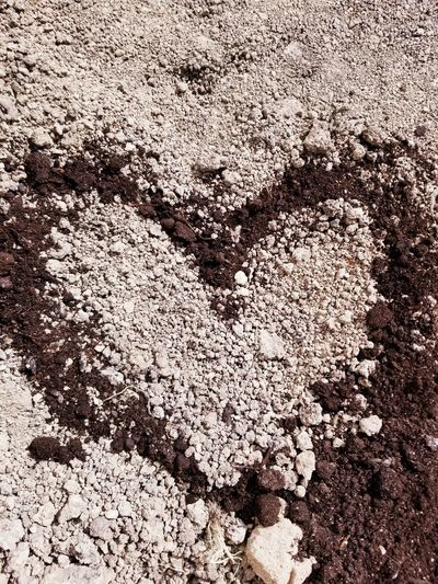 Cherish the Soil Soil Nature Ground Sand Care For Our Wildlife Care For Mother Earth Care For Nature Care For Environment Backgrounds Sand Full Frame Textured  Beach Love Abstract Pattern Sunlight Close-up Heart Shape