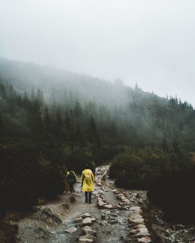 Lost In The Landscape Fog Nature Real People Rear View Mountain Weather Beauty In Nature Togetherness Walking Tranquil Scene Tree Full Length Scenics Leisure Activity Day Outdoors Hiking Water Tranquility Men