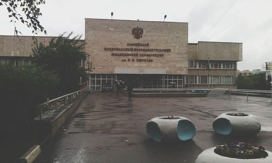 Мединститут Учеба Дождь