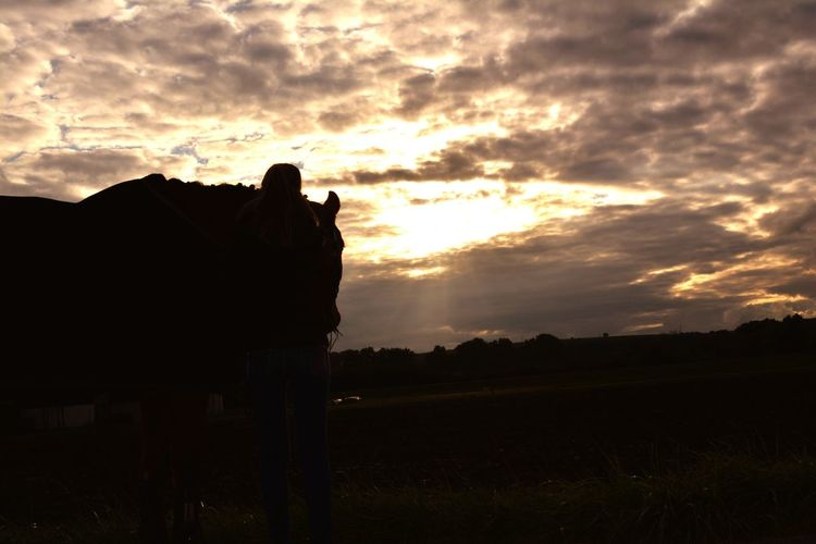 Horse Horse Photography  Horselife Horselovers Sunset Silhouette Cloud - Sky No People Outdoors Nature Sky