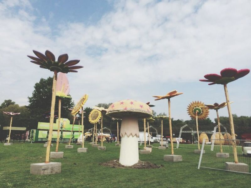Sziget2014 Flowers Hanging Out Chillin Music Mushroom