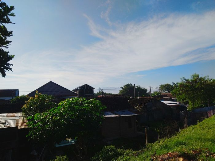 Houses by trees and buildings against sky