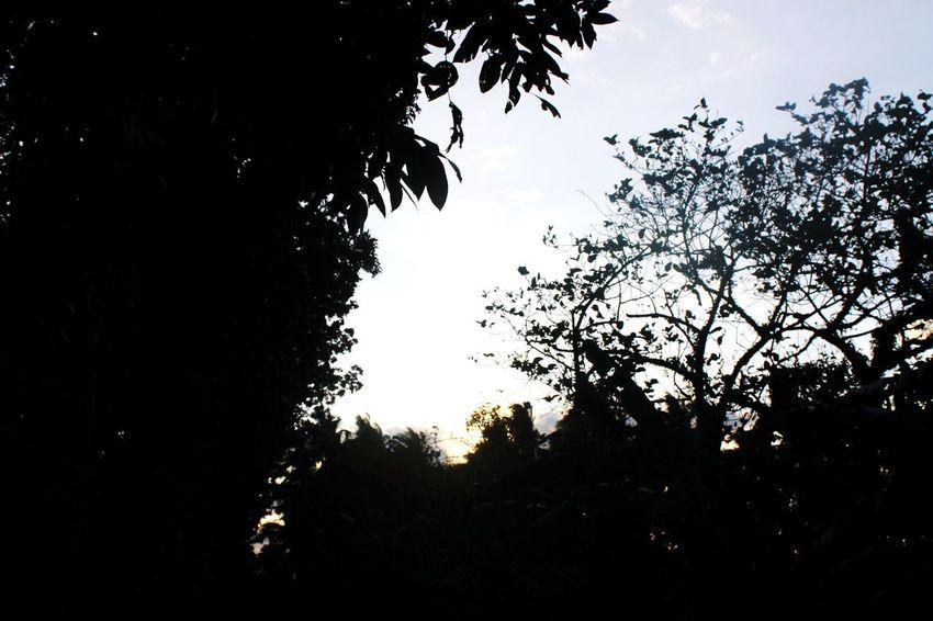 Another day had been done ☀ Enjoying Life Sunset Photooftheday EyeEm Best Shots Basic Eyeem Philippines Eye Em Nature Lover
