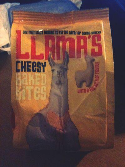 Llama's