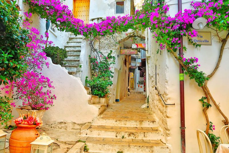 streets of sperlonga Sperlonga Italy ViaOrticello Flowers Streets Niche Stairs Home Whitewalls  Multi Colored No People Day Building Exterior Outdoors