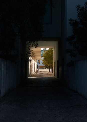 Dark alley, bright square Architecture Direction The Way Forward Built Structure Building Building Exterior Plant Night Tree No People Empty Nature Illuminated Footpath Outdoors Diminishing Perspective City Residential District Street House Alley Long