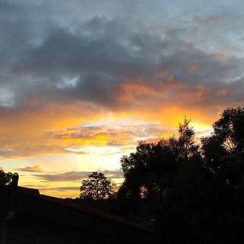 Sunset from back deck Ryde Sunset Visitnsw Visitaustralia Ryde Travel Travelgram Travelaustralia