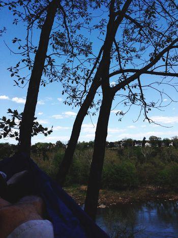 Hikes and hammocks bc summer bc nature