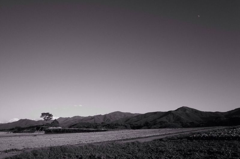 EyeEm Best Shots - Black + White Black And White Landscape_Collection