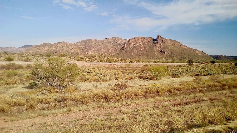 Desierto...Desert No People Nature First Eyeem Photo EyeEme Day Landscape Beauty In Nature FirstEyeEmPic EyeEmNewHere. Empalme Sonora EyeEm EyeEmNewHere Eyemphotography Sonora