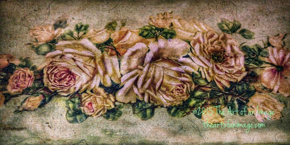 Suffolkcounty newyork NY longisland Roses🌹 bouquet Petals Painteffect Theartofanimage Nature Flowers