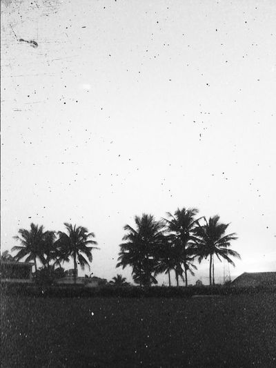 Veracruz B&w B&w Photography Shades Of Grey Shapes And Forms Somewhere In Mexico