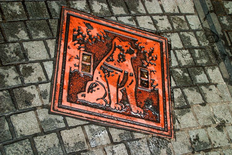 Art And Craft Hachiko Manhole  Multi Colored Textured  Tokyo