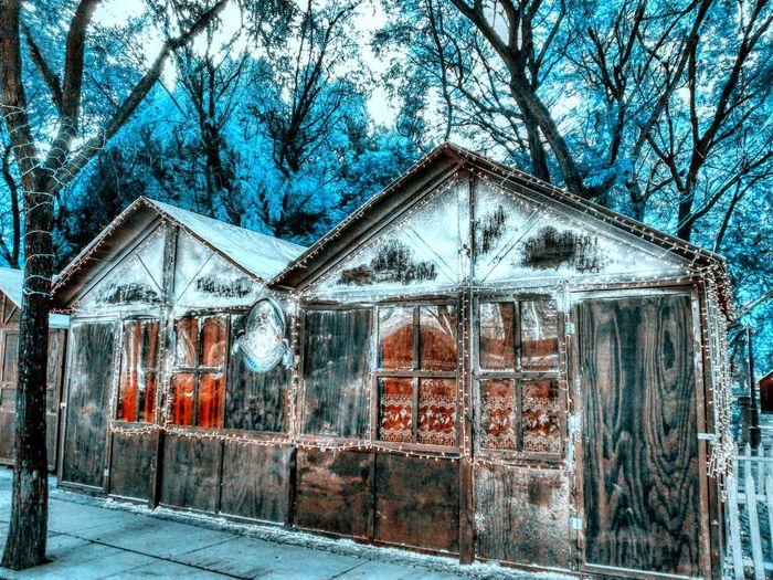 It's Cold Outside Cold Winter SPAIN Seville Shops Noel2015 Ice