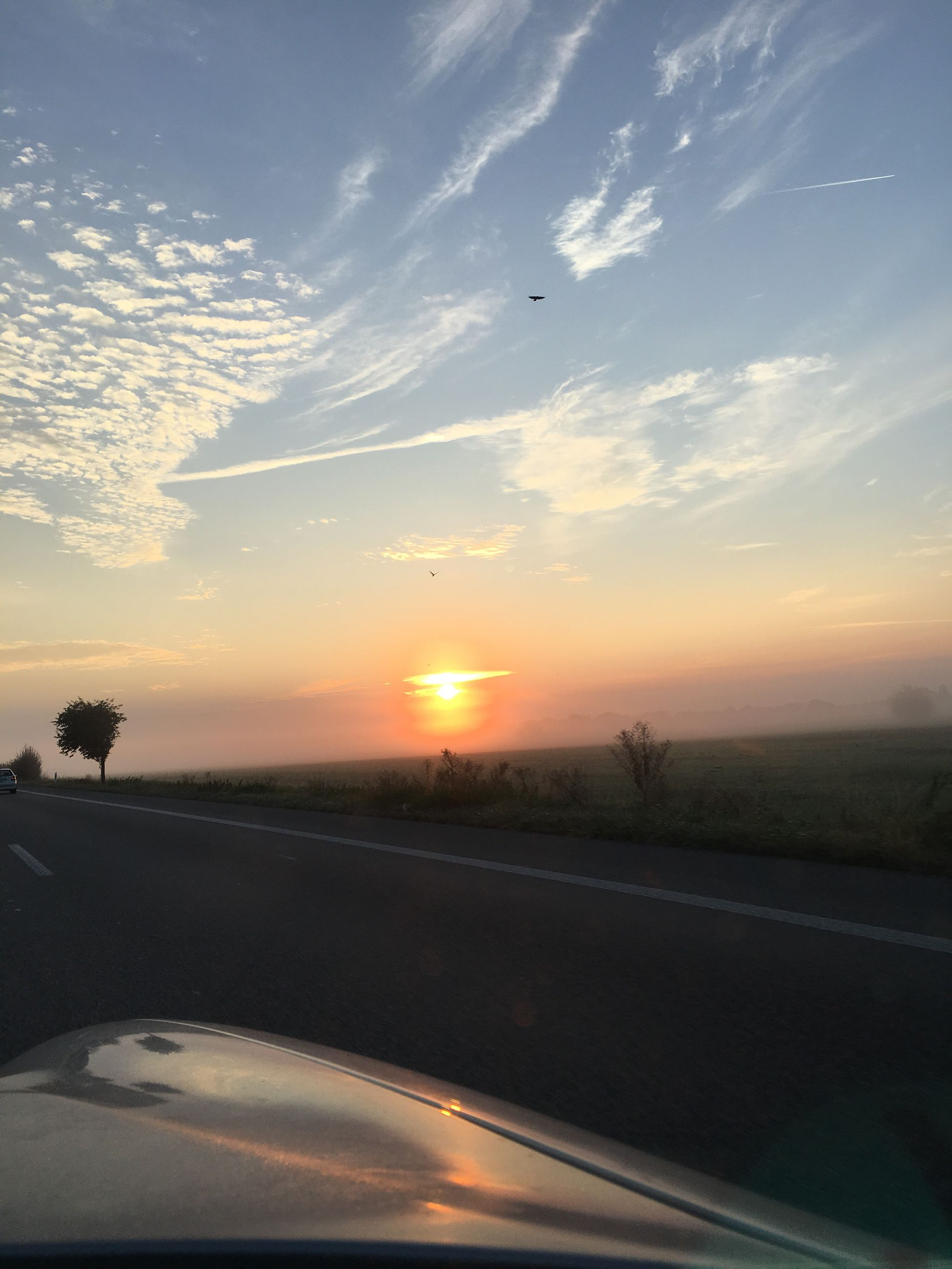 sunset, transportation, sun, landscape, road, car, tranquil scene, sky, scenics, orange color, cloud, tranquility, outdoors, nature, beauty in nature, solitude, the way forward, countryside, country road, non-urban scene, long, horizon over land, rural scene, no people