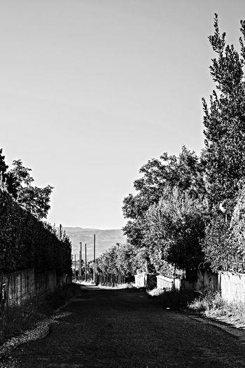 Taking Photos Eye Em Nature Lover Street Black & White
