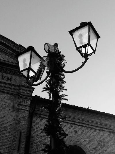 Govone Piemonte Govone  Piedmont Italy Govone  Govone (CN) Piemonte Street Light Light Blackandwhite Black & White Low Angle View Sport Day Clear Sky Sky Outdoors Court Tree No People