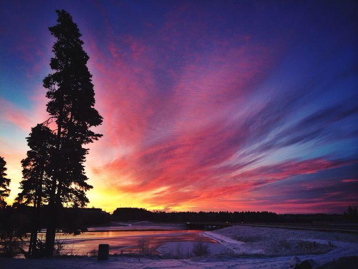 Just one fine norwegian morning Norway Sunrise Landscape Winter Traveling