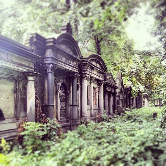 Cmentarz Zydowski Zabrze