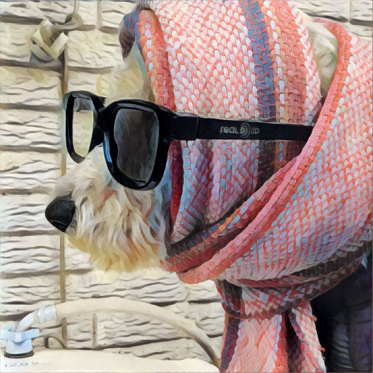domestic animals, pets, dog, one animal, animal themes, mammal, sunglasses, day, no people, pet clothing, outdoors