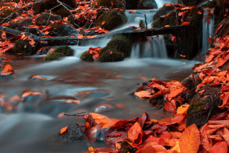 Stream flowing through rocks during autumn