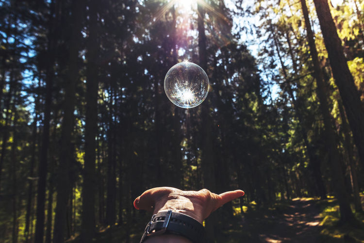 Cropped hand catching crystal ball against trees