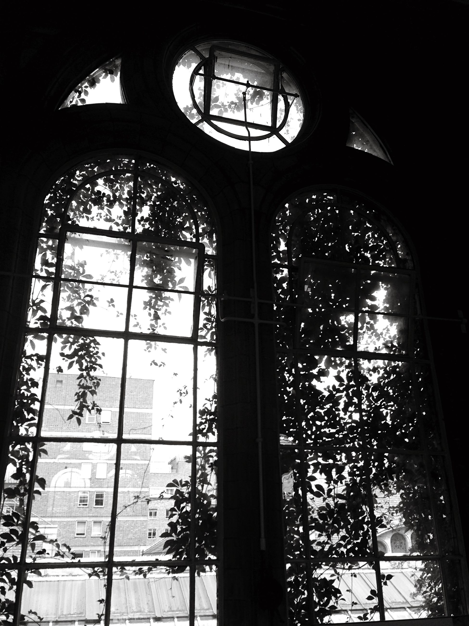 indoors, window, architecture, glass - material, built structure, arch, transparent, low angle view, ceiling, interior, church, stained glass, religion, skylight, place of worship, day, no people, spirituality, building