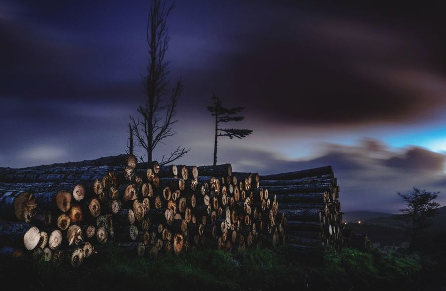 Stack Log Deforestation Lumber Industry Cloud - Sky Sky Timber Woodpile Large Group Of Objects Outdoors Heap Wood - Material No People Nature Industry Day Tree Forestry Industry