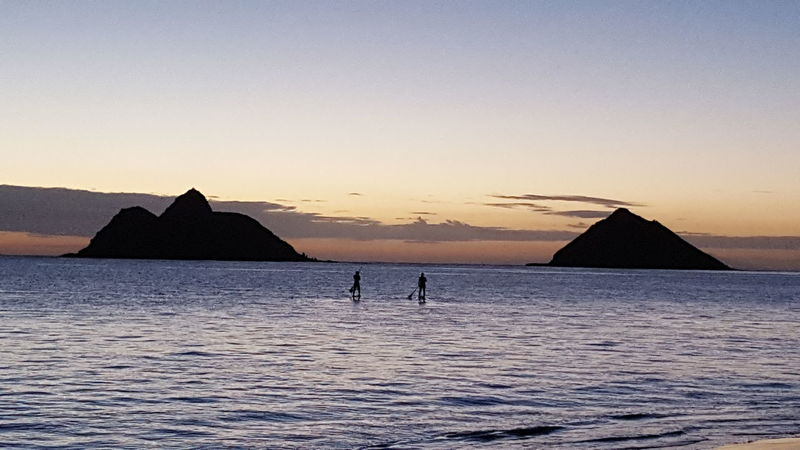 Sunrise Stand Up Paddle Calm Peacefulness View Relaxing Loving Life  Earlymorning