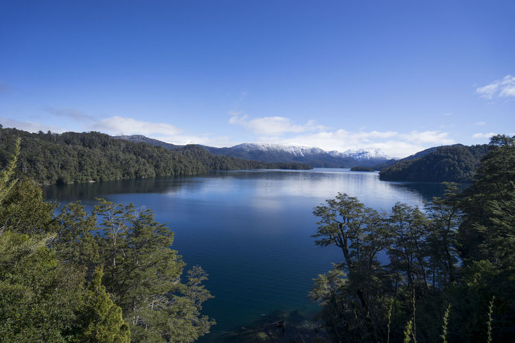 Patagonia Lake View Argentina Blue Cloud Forrest Green Lake Lake View Lakeshore Patagonia Reflection Serence Sky Snow Snow Capped Mountains South America Tourism Travel Tree Water
