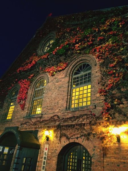 Fall Beauty Wall Autumn Leaves Urban I Love My City History Museum  Historical Architecture My Best Photo 2015 The Culture Of The Holidays