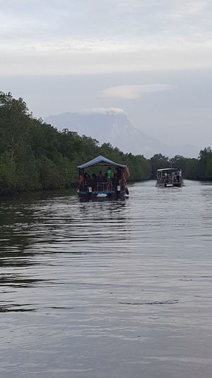 Cruising the river looking for the proboscis monkey and adventuring the fantastic view of the mount kinabalu sabah malaysia Nature Adult Floating On Water Lake Outdoors Day Water Rural Scene Nautical Vessel Adults Only People Mangrove Forest River Cruising Malaysia Water Reflections River City Escape Cloud And Sky Blue Travel Destinations Sky Clear Sky Lifestyles Hobby Mount Kinabalu Malaysia Sabah