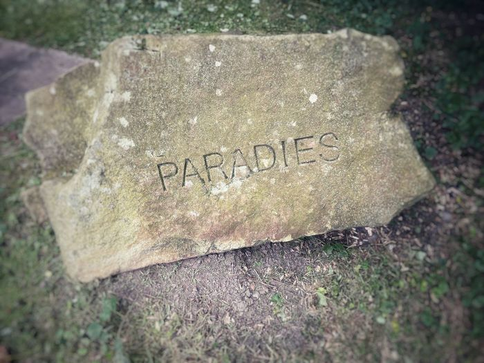 High angle view of text on rock