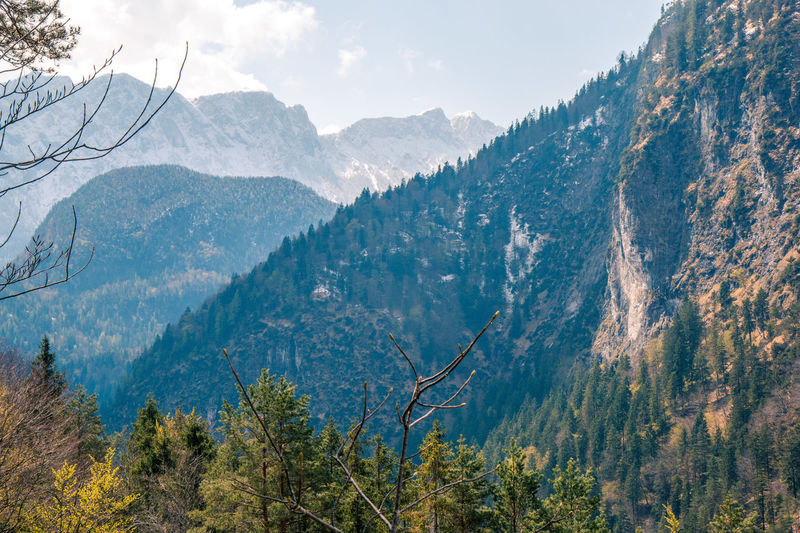Reiteralpe Bavaria Bavarian Alps Beauty In Nature Canyon Day Eyem Nature Lovers  Landscape Landscape_Collection Landscapes Mountain Mountain Range Nature No People Outdoors Range Sky Tree