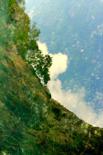 Abstract Artistic Beauty In Nature Blagaj Bosnia And Herzegovina Cloud - Sky Colorful Day Green Color Growth Landscape Nature Nature Outdoors Reflection River Sky Tranquility Tree Tree