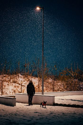 View of man and dog on snow covered landscape at night under street lamp