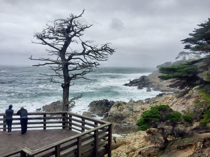 A time at lone cypress Sea Sky Water Nature Beauty In Nature Tree Horizon Over Water Railing Scenics Real People Outdoors Power In Nature Day Men Wave One Person Popular Photos From My Point Of View Beauty In Nature Popular Popular Photo