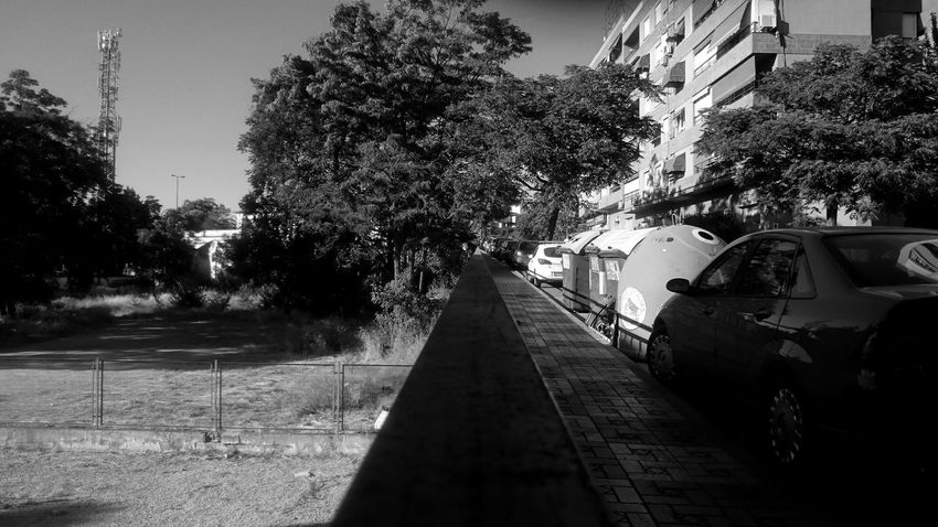 Railing Architecture Balck And White Blackandwhite Building Building Exterior Built Structure Car City Day Direction Land Vehicle Mode Of Transportation Monochrome Motor Vehicle Nature No People Outdoors Plant Road Street Transportation Tree