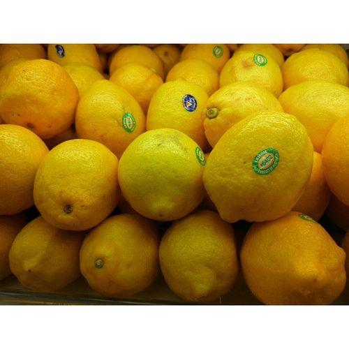 InstaMagAndroid Lemon Lemonfruit Fricosihaloho