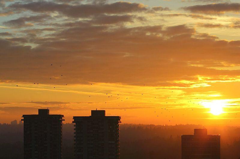 EyeEm Nature Lover EyeEm Best Shots Sunset Landscape Cityscape Streamzoofamily
