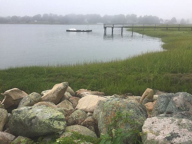 Water Nature Tranquility Day Tranquil Scene Lake Nautical Vessel Beauty In Nature Outdoors Scenics Grass No People Moored Harbor Sky Tree Foggy Morning Stormy Weather Duxbury Bay Beautiful Nature Landscape_Collection Harbor Waterfront