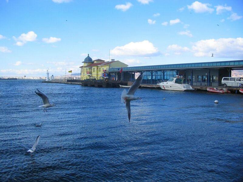 Pasaport / İzmir Here Belongs To Me I Love My City Capture The Moment EyeEm Birds Birds Seagulls Feeding Seagulls Alsancak Pasaport Taking Photos Alsancak Kordon Izmirlife My Best Photo 2015