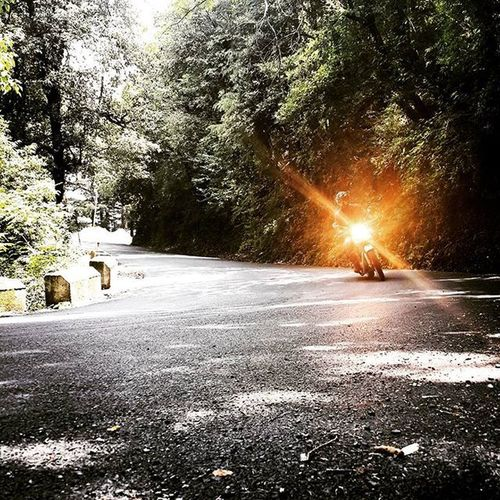 Just another day ya. Itraveliclick Love Loveforever Followforfollow Followme Indiagram TBT  Throwback Photography Photographer Streetphotography Likes Likeforlike Cute Girls Beauty Igers Rider Fitness Fit Adventure Bullet Royalenfield Bulleters Friends _soi _oye @oyeitsindia indianstreet himachalpradesh Adventure bike