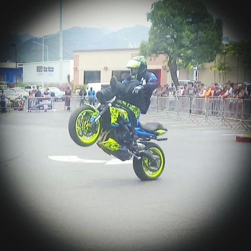 Stunt fest with