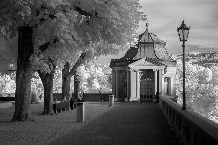 Park Infrared Building Exterior Built Structure Day Infrared Photo Infrared Photography Infraredphotography Outdoors The Way Forward Tree