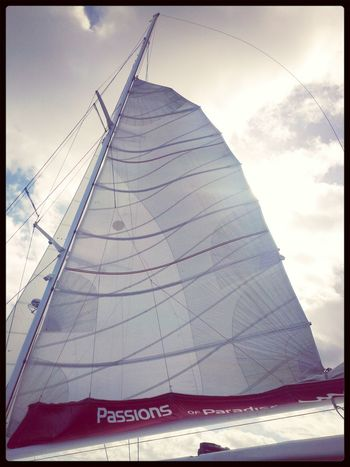 Sails Up on thr way back to the harbour for a relaxing cruise